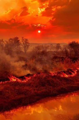 Bosbranden Australië (30).jpg