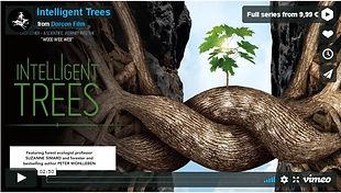 communicatie bomen.JPG