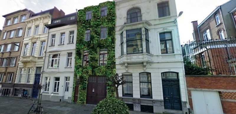 groen-gebouw.jpg