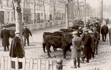 Gent-historisch (22).jpg
