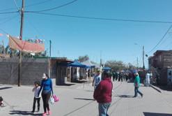 Pampa del Tamarugal-2.JPG