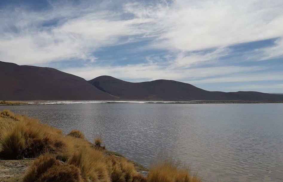 Los Flamencos National Reserve-2.JPG