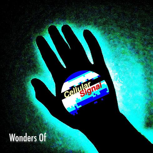 Wonders Of Artwork-4.jpg