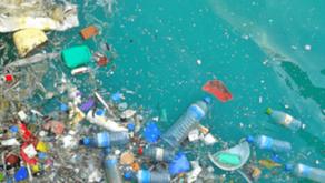 Ban on single-use plastic