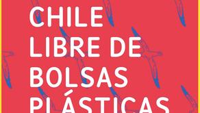Good Bye to Plastic Bags