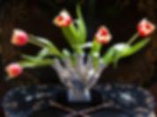 card Tulipiere.jpg