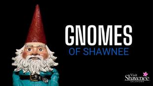 The Gnomes of Shawnee