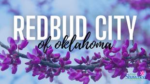 Shawnee: Redbud City of Oklahoma
