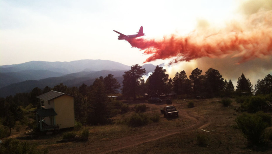 After The Fires: Lessons in Resiliency from the High Country