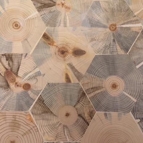 Blue Stain Pine Hexagon End Grain Flooring