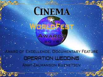 Award of Excellence - Cinema World Fest Awards Winter 2018 Canada