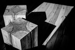 deadwood stools