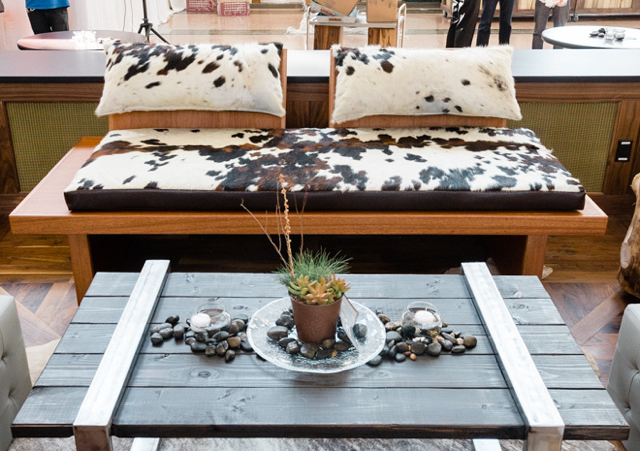 AED cowhide couch + coffee table