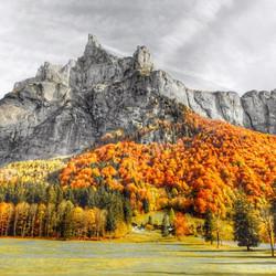 Stunning Autumn colours - Sixt, fer à cheval