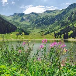 Summer at lac de Gers