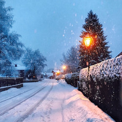 Our road, early morning, winter