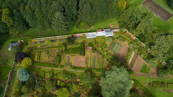 Garden drone.jpg