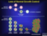 cancer process.jpg