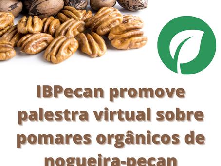 IBPecan promove palestra virtual sobre pomares orgânicos de nogueira-pecan