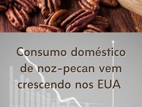 Consumo doméstico de noz-pecan cresceu 32% em 8 meses nos EUA