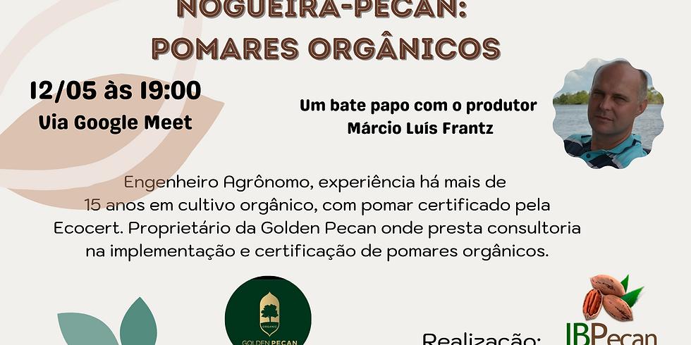 Palestra virtual- Nogueira-Pecan: Pomares Orgânicos