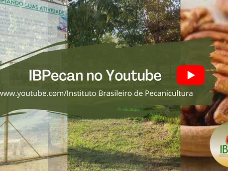 Youtube: canal IBPecan
