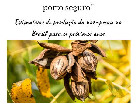 Artigo :A pecanicultura é um porto seguro