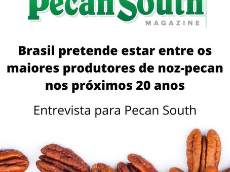 Brasil pretende estar entre os maiores produtores de noz-pecan nos próximos 20 anos