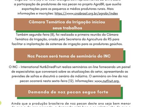 News IBPecan -08 a 12/06
