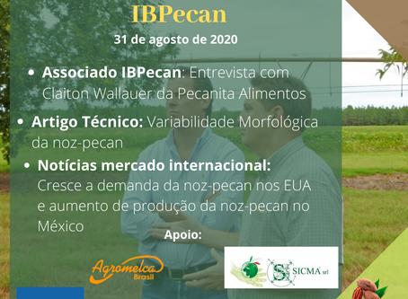 Boletim Informativo IBpecan: edição 10