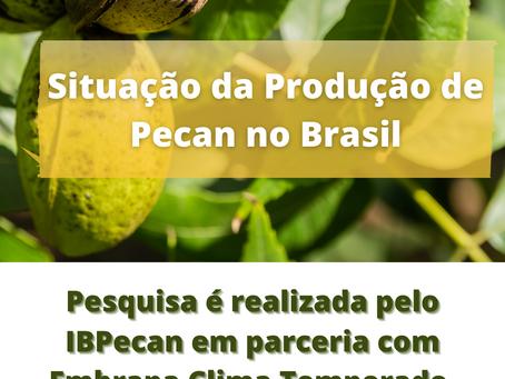 Pesquisa: Situação da Pecan no Brasil.