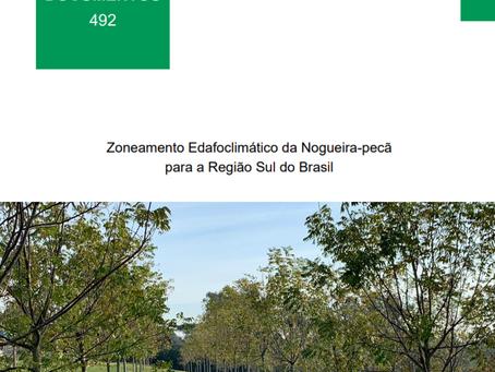 Embrapa lança documento com áreas recomendadas para cultivo da nogueira-pecã no Sul do País