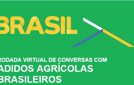 Exportação: IBPecan conversa com Adidos Agrícolas Brasileiros