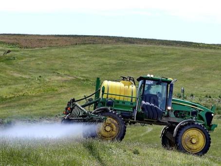 Agricultura cria sistema para cadastro de cultivos sensíveis a herbicidas hormonais