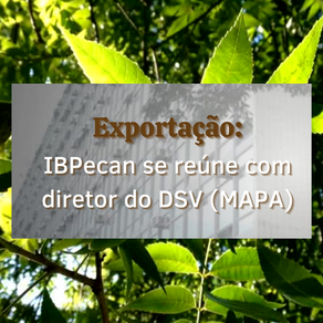 IBPecan se reúne com diretor do DSV MAPA