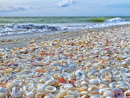 Top Destination | Sanibel Island, Florida