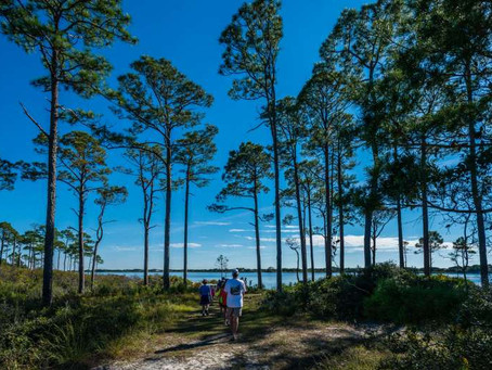 Top Destination | Topsail Hill Preserve State Park | Santa Rosa Beach, Florida