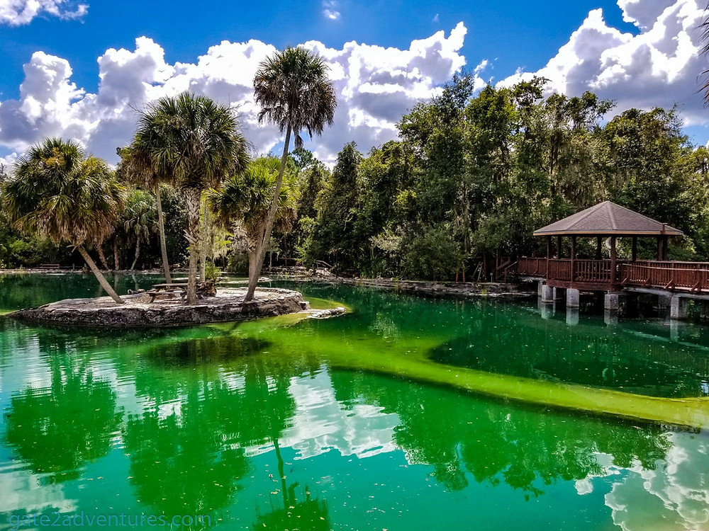 Campsite at Disney's Fort Wilderness Resort   Walt Disney World Resort