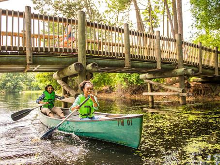 Top Destination | The Campsites at Disney's Fort Wilderness Resort | Orlando, Florida
