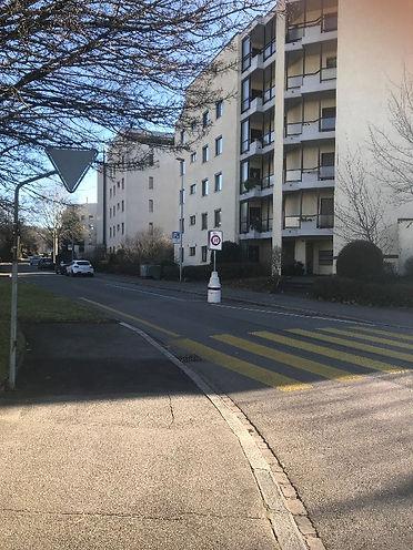 Einfahrt Strasse.jpg