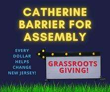 Barrier Grassroots Anedot.png