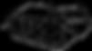 logo-video copy.png