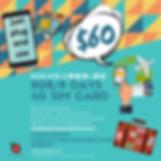 SIM Offer_IG.png