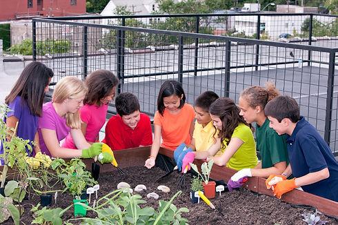 urban-garden-planting.jpg