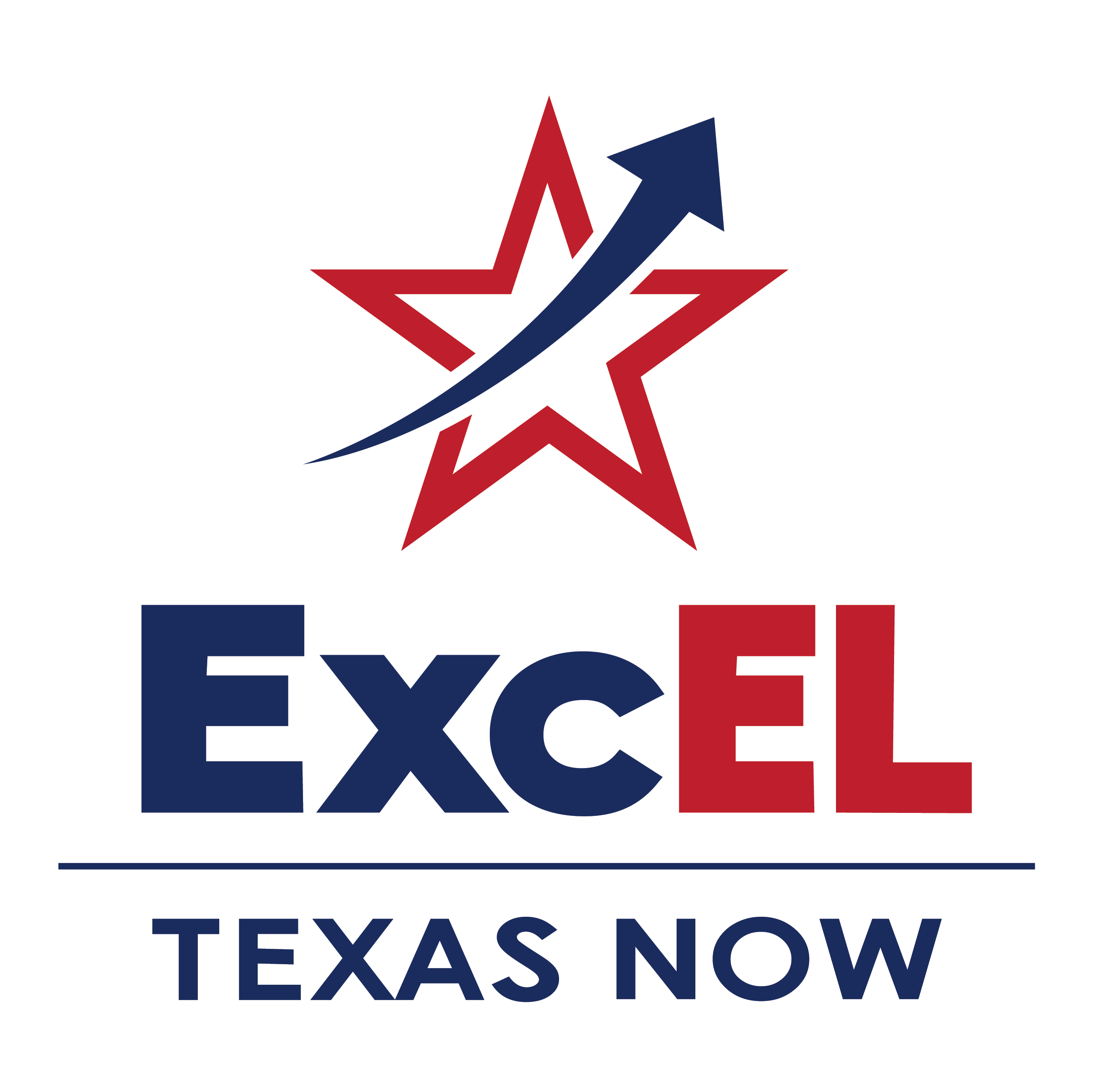 Consulting for ExcEL Texas Now