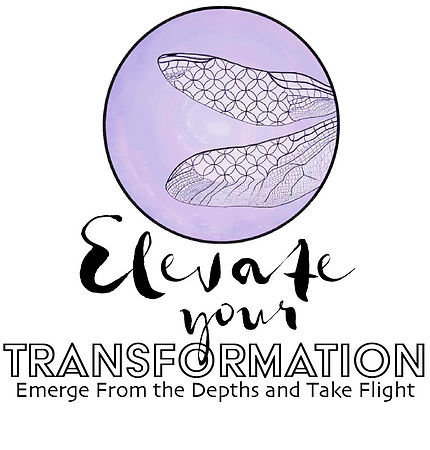 Elevate Your Transformation