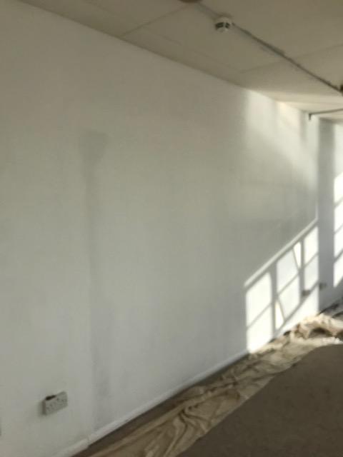 Plastering Services Brighton & Hove
