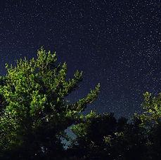 Stargazing Night Hike .jpg