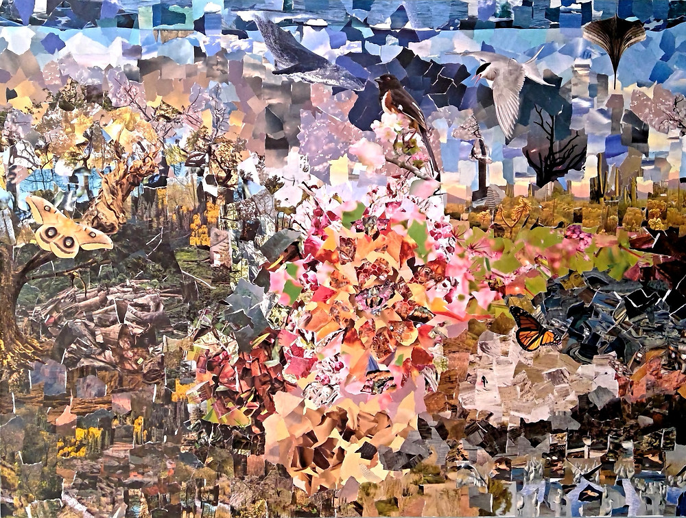 Torn Paper, Emergence