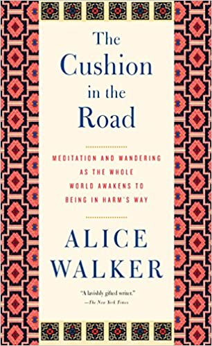The Cushion in the Road: Meditation and Wandering as the Whole World Awakens to